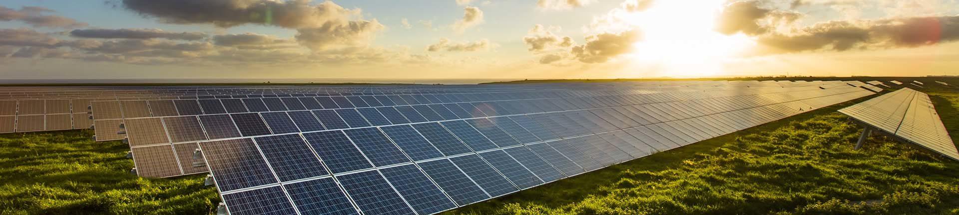 Sonnenenergie dank Solarpaneelen am Feld - natürlicher und günstiger Ökostrom